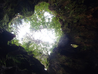 屋久島2012 036.JPG